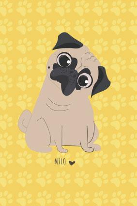 milo-new